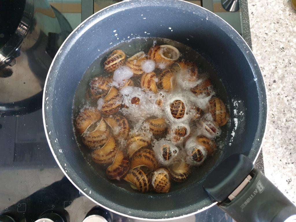 escargots crétois